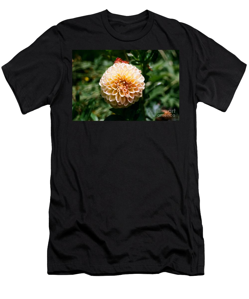 Zinnia Men's T-Shirt (Athletic Fit) featuring the photograph Zinnia by Dean Triolo