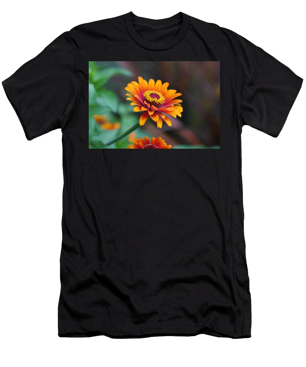 Orange Men's T-Shirt (Athletic Fit) featuring the photograph Zinnia Flowers by Carrie Goeringer