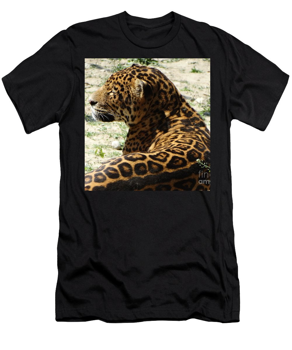 Wild Men's T-Shirt (Athletic Fit) featuring the photograph Zoo 2015 006 by Dan Marinescu