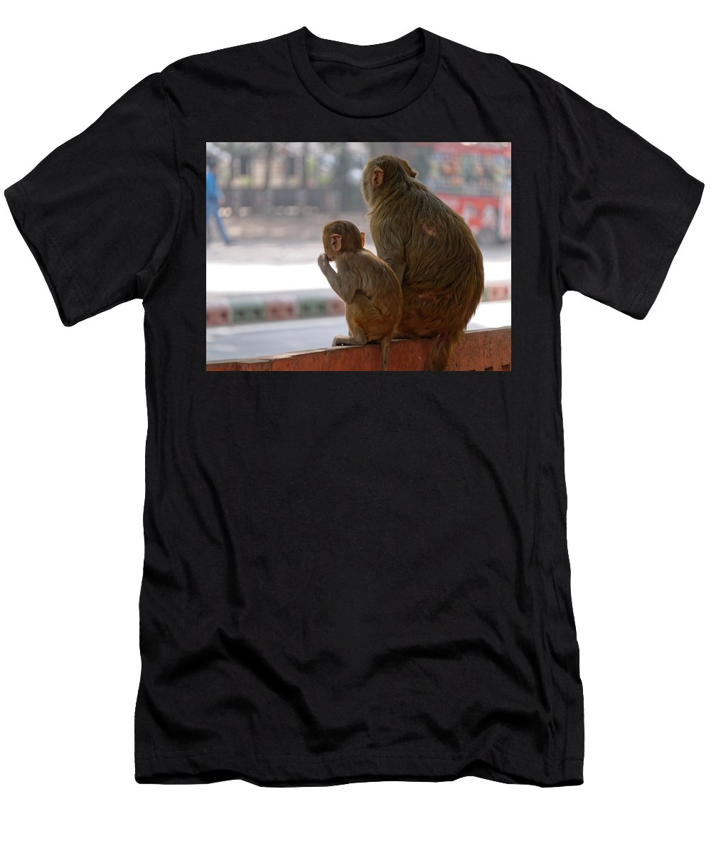 Monkey Men's T-Shirt (Athletic Fit) featuring the photograph Zoo Reverse by Jan Eufinger
