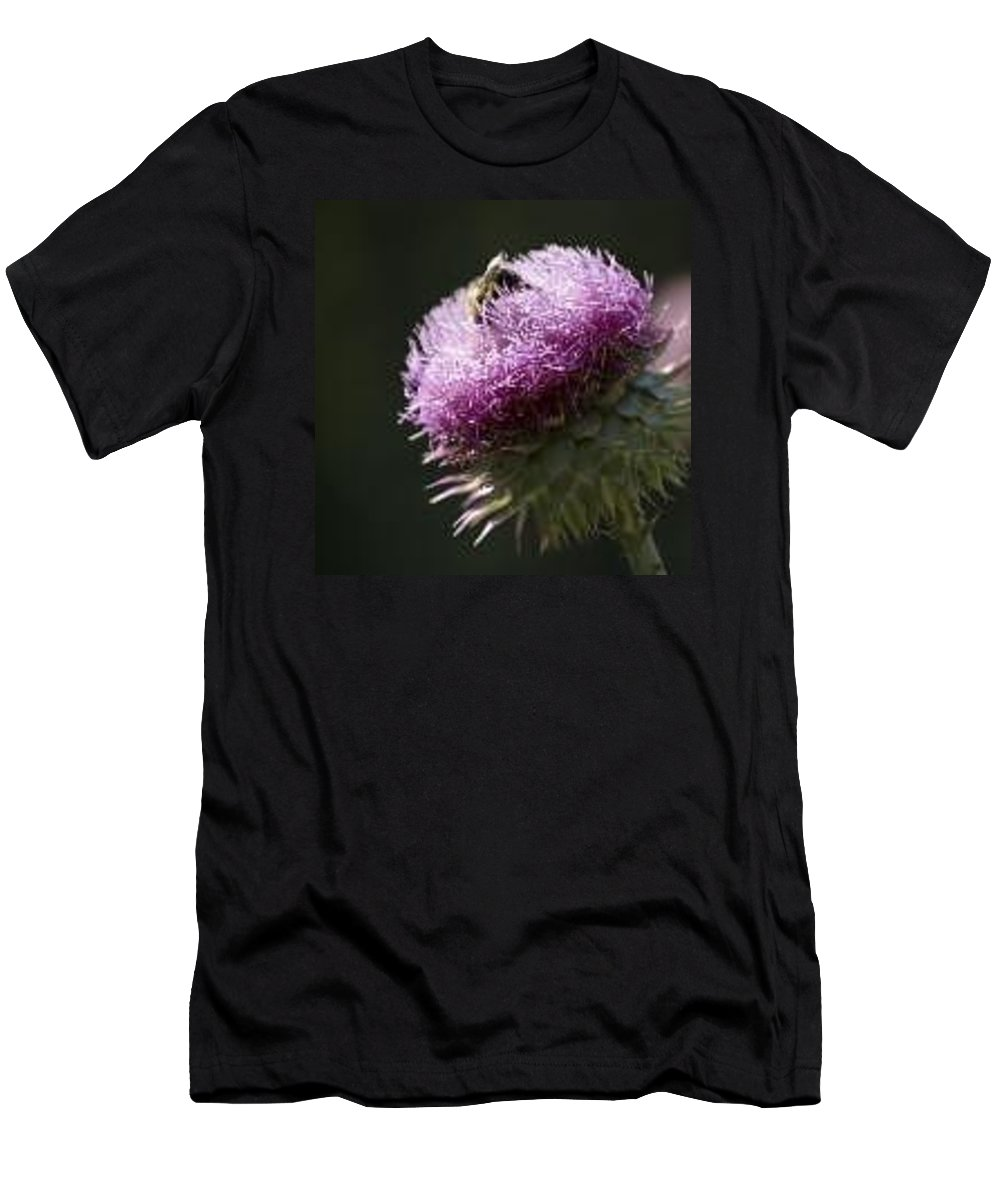 Bee T-Shirt featuring the photograph Bee on Thistle by Nancy Ayanna Wyatt
