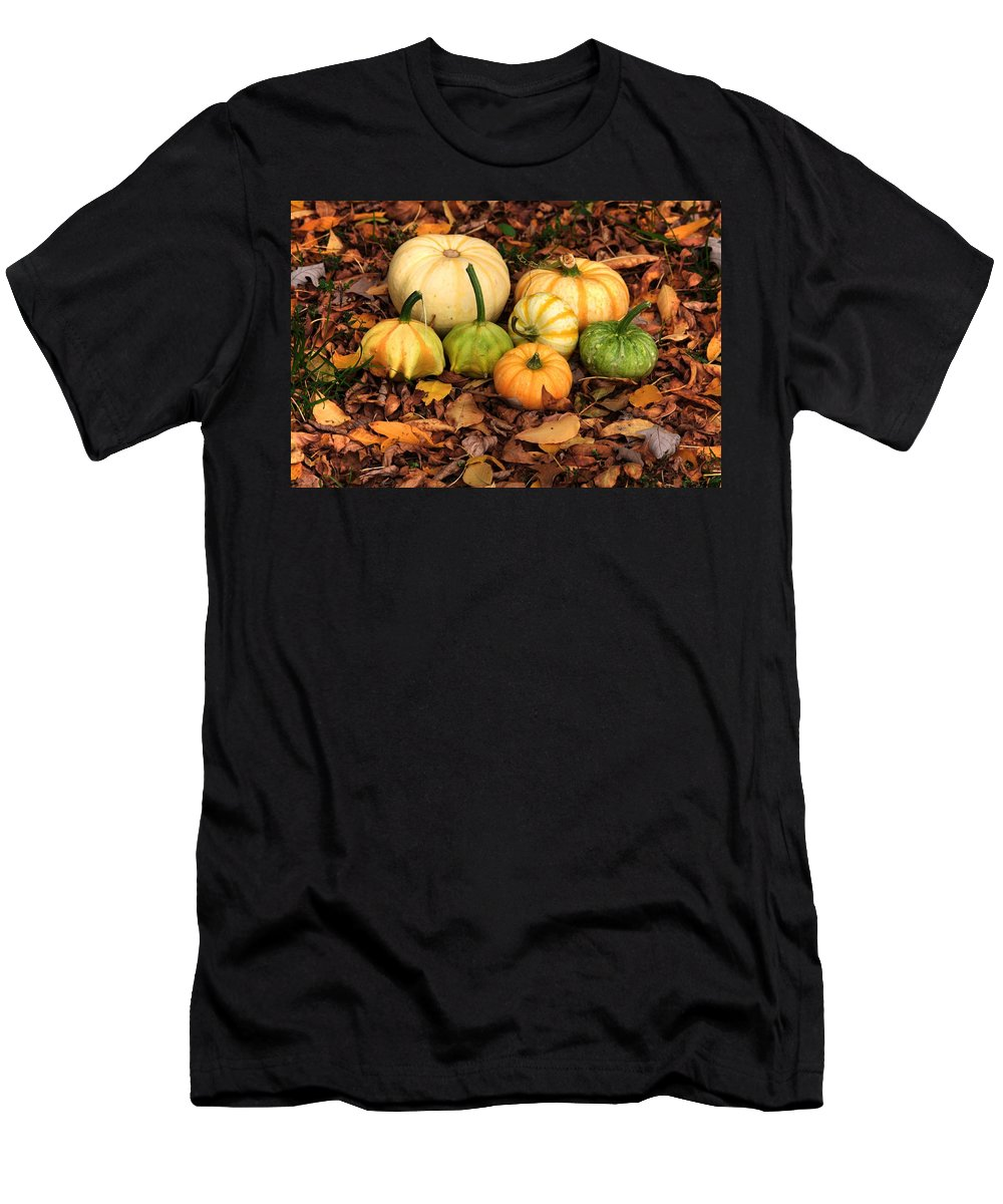 Autumn Fall Colours Colors Winter Red Yellow Red Orange Blue Harvest Evening The End Over This Before Winter Awakening Fall Colours Fall Color Summers End Pumpkins Halloween Leaves Gourds Fall Avenue Men's T-Shirt (Athletic Fit) featuring the photograph Gourds Grounded by David Matthews