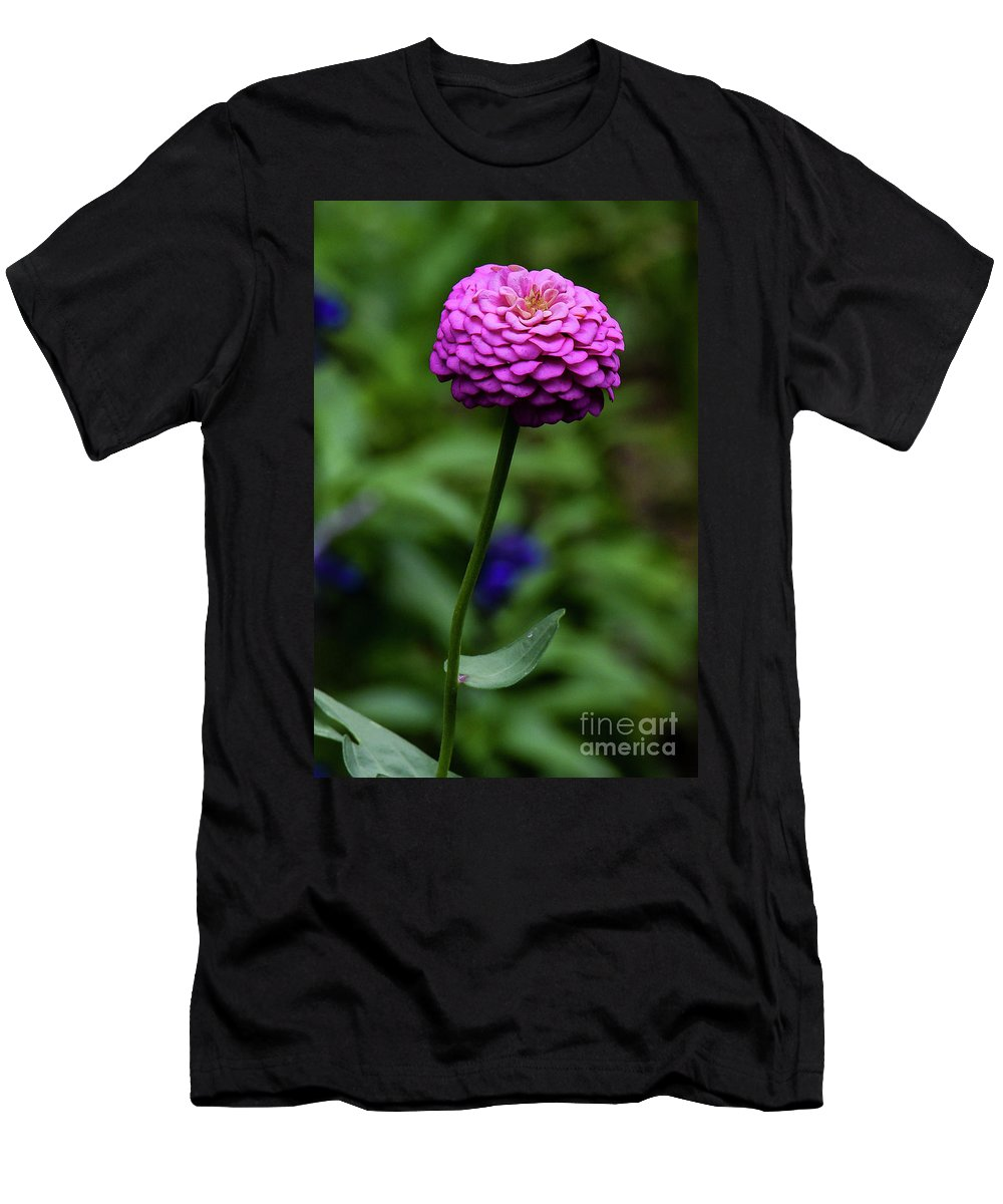 Zinnia Men's T-Shirt (Athletic Fit) featuring the photograph Zinnia by Michael D Miller