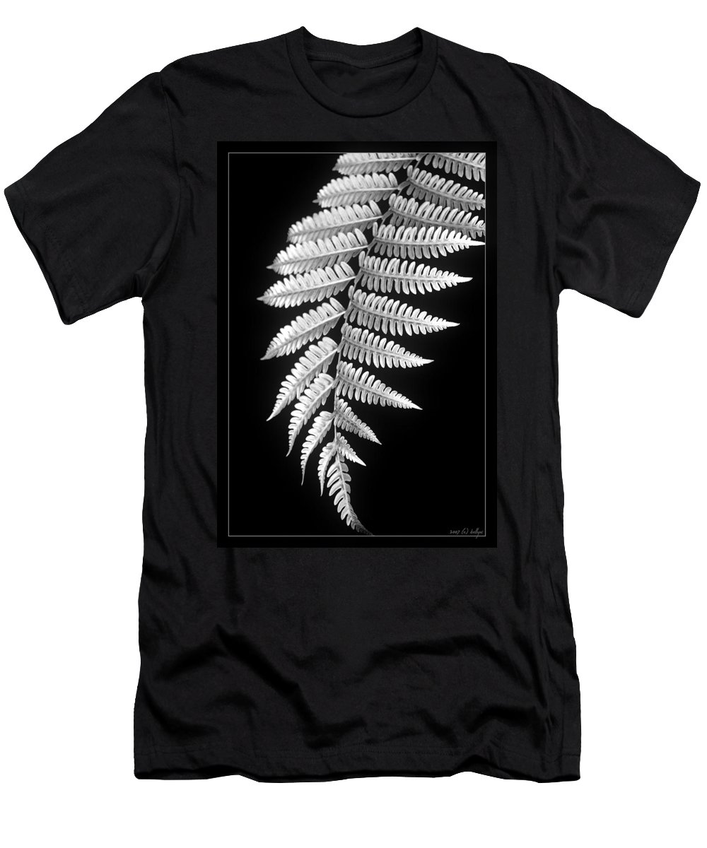 Australia; Floral T-Shirt featuring the photograph Fern Dance by Holly Kempe