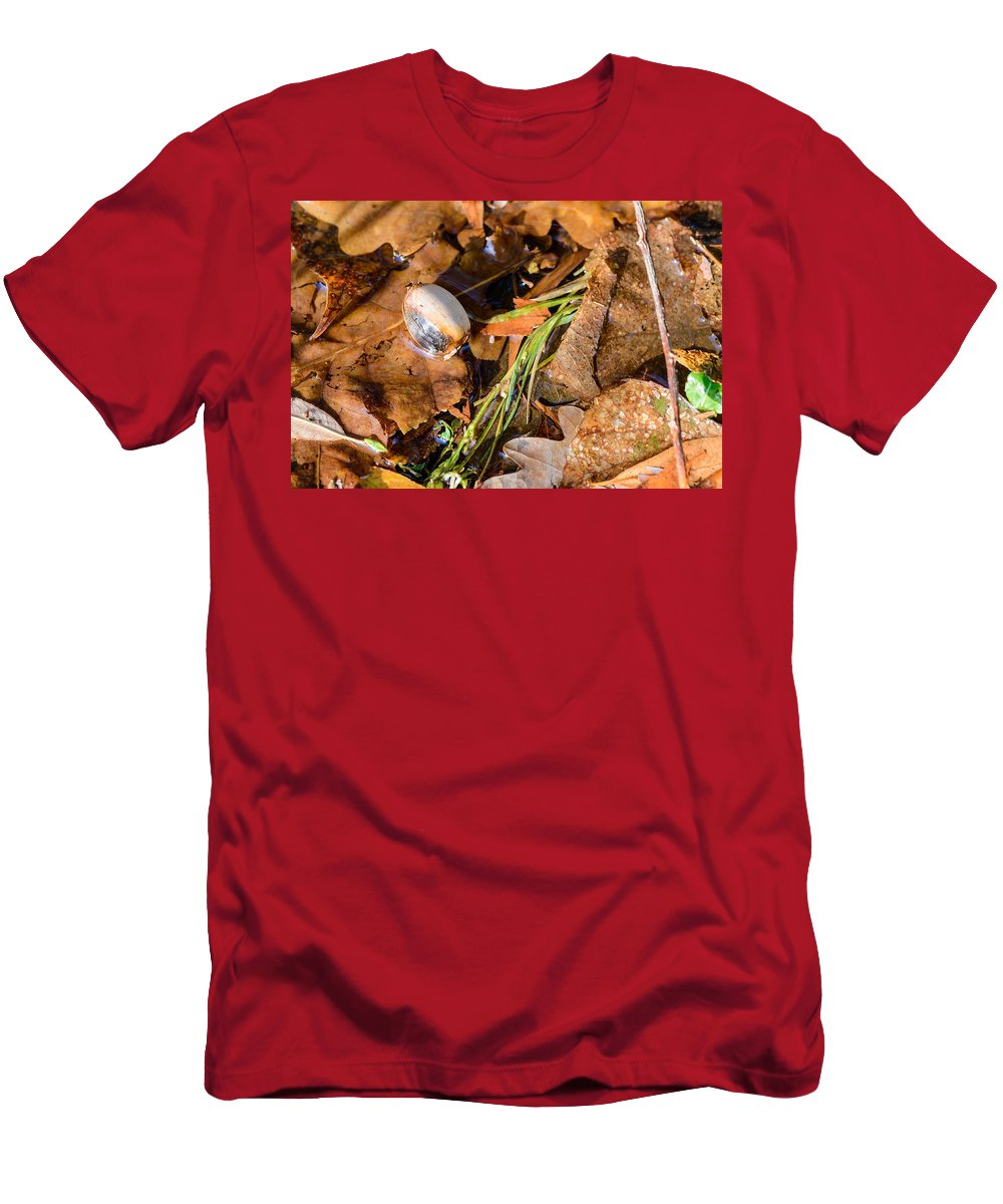 Autumn Men's T-Shirt (Athletic Fit) featuring the photograph Dry Acorn And Oak Leaves by Alain De Maximy