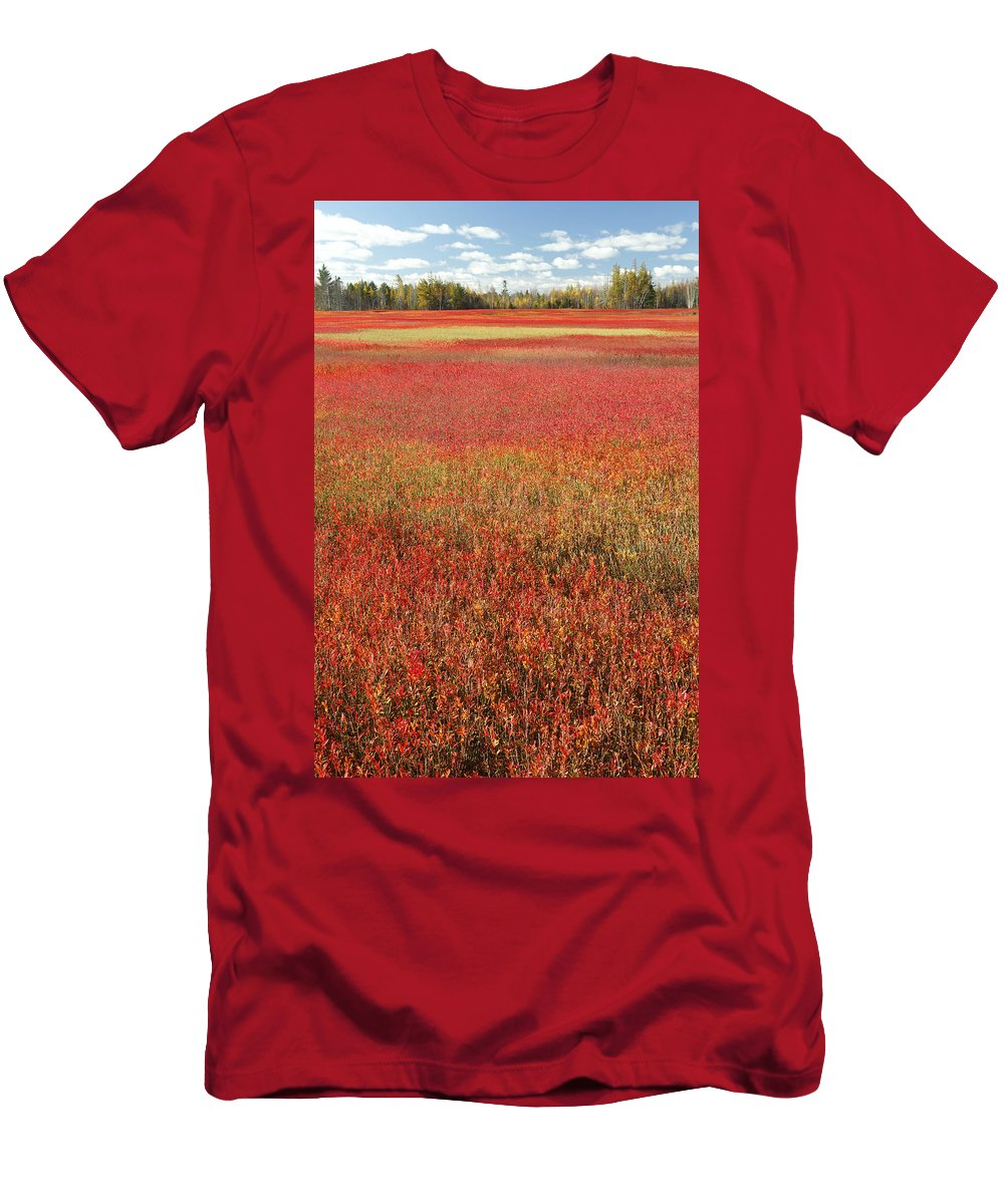 Feb0514 Men's T-Shirt (Athletic Fit) featuring the photograph Autumn Blueberry Field Maine by Scott Leslie