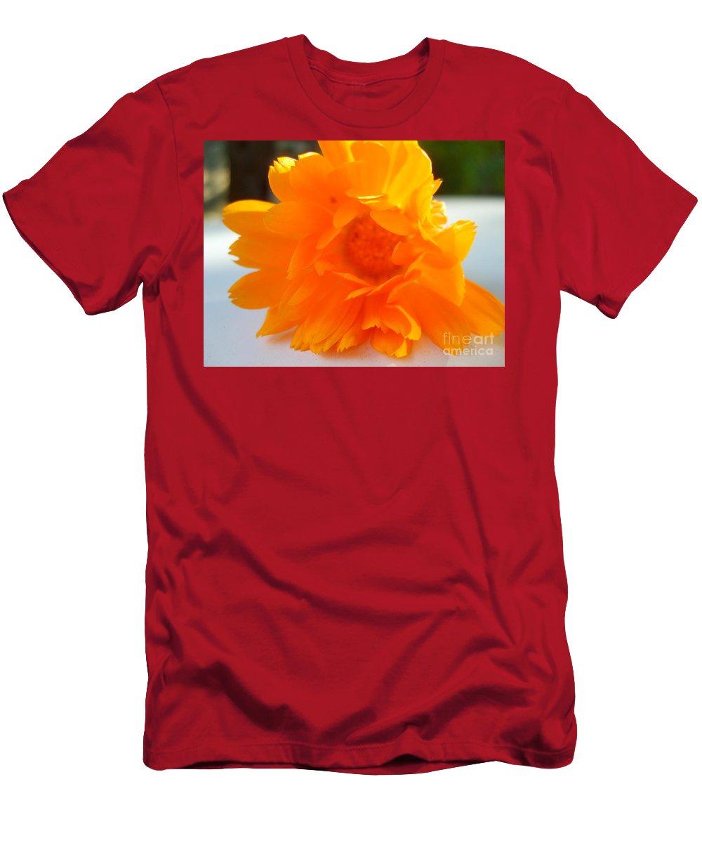 Calendula Officinalis Men's T-Shirt (Athletic Fit) featuring the photograph Calendula by Nina Ficur Feenan
