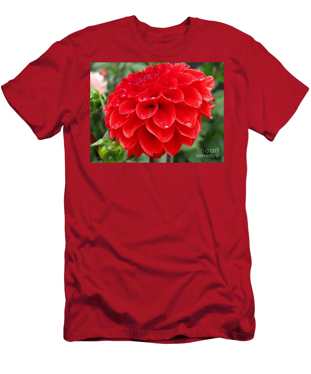 Mccombie Men's T-Shirt (Athletic Fit) featuring the photograph Dahlia Named Ali Oop by J McCombie