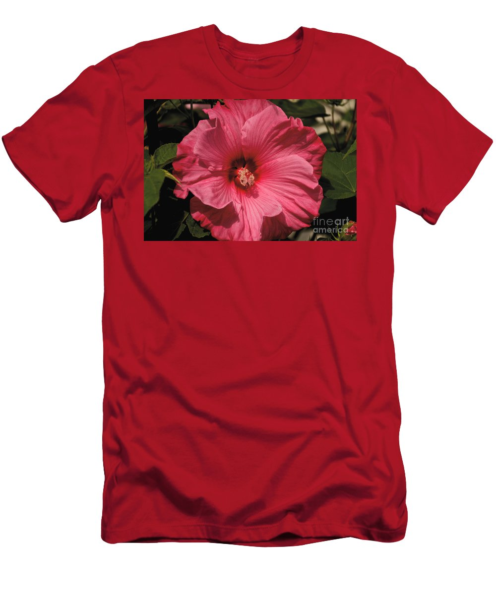 Tree Men's T-Shirt (Athletic Fit) featuring the photograph Pink by William Norton