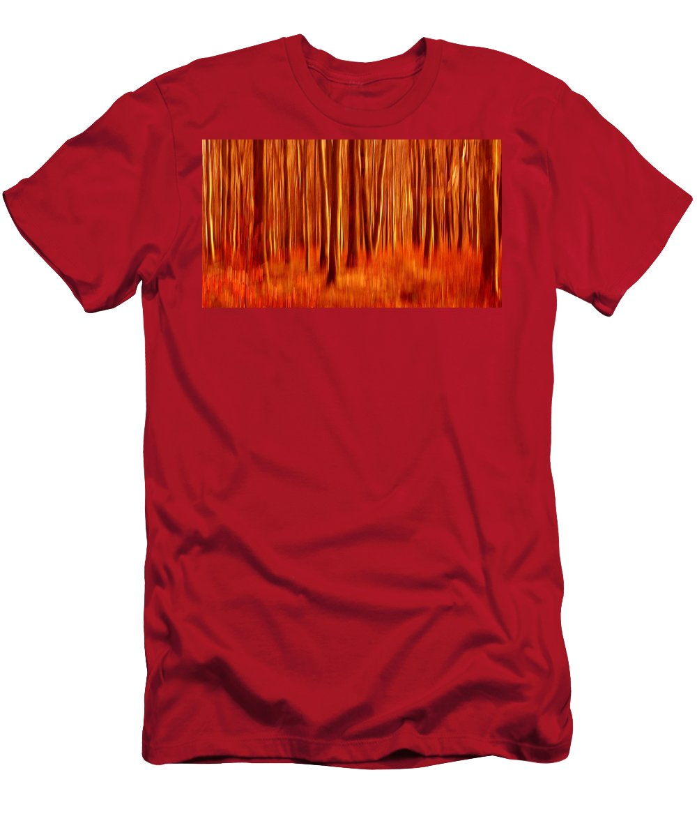 Forest Men's T-Shirt (Athletic Fit) featuring the photograph Autumn Colors by Heike Hultsch