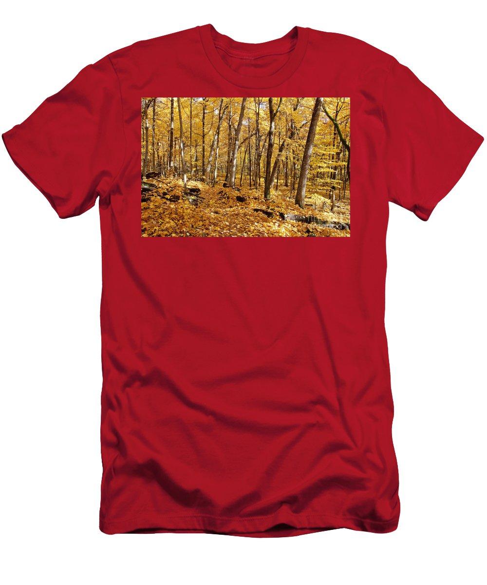 Aboretum Men's T-Shirt (Athletic Fit) featuring the photograph Arboretum Trail by Steven Ralser
