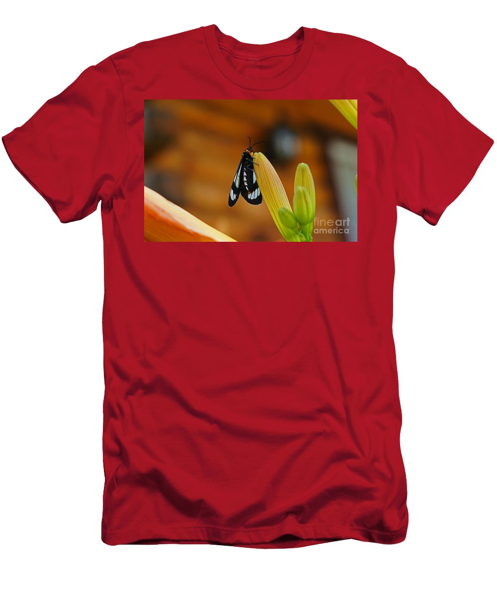 Butterflies Men's T-Shirt (Athletic Fit) featuring the photograph Butterfly An3606-13 by Randy Harris