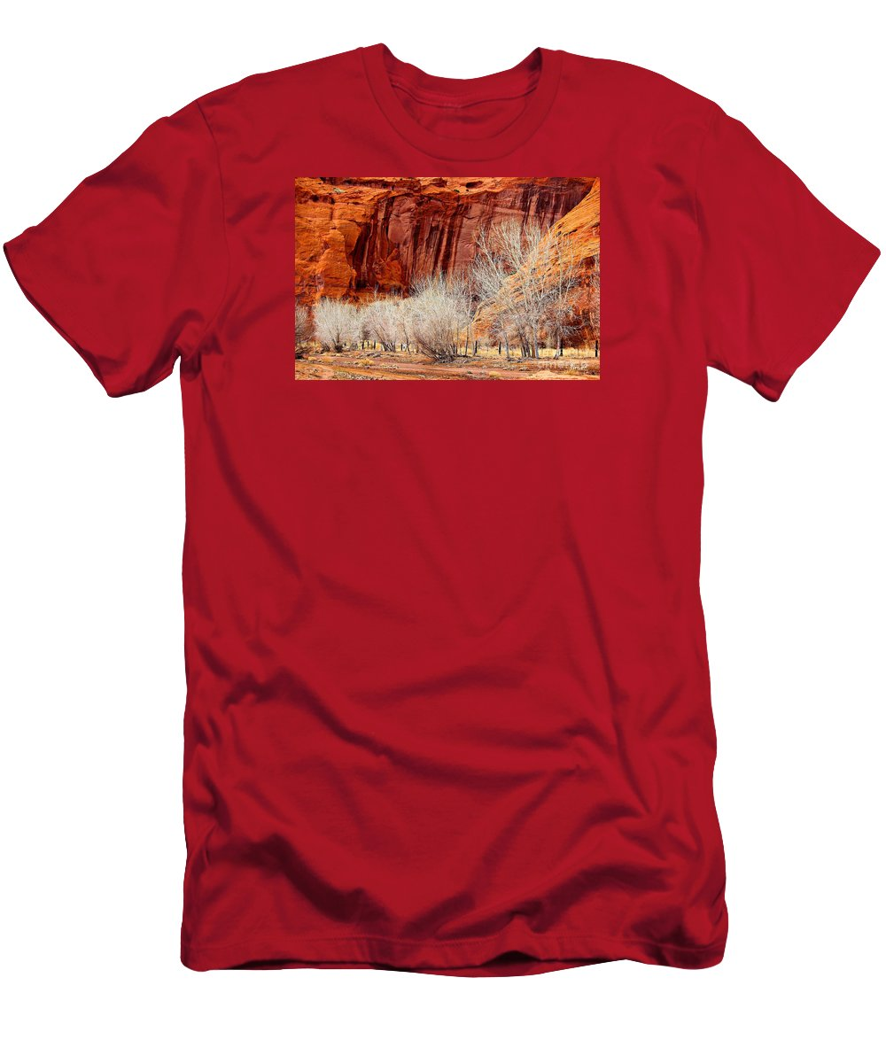 Canyons Men's T-Shirt (Athletic Fit) featuring the photograph Canyon De Chelly - Spring II by Barbara Zahno