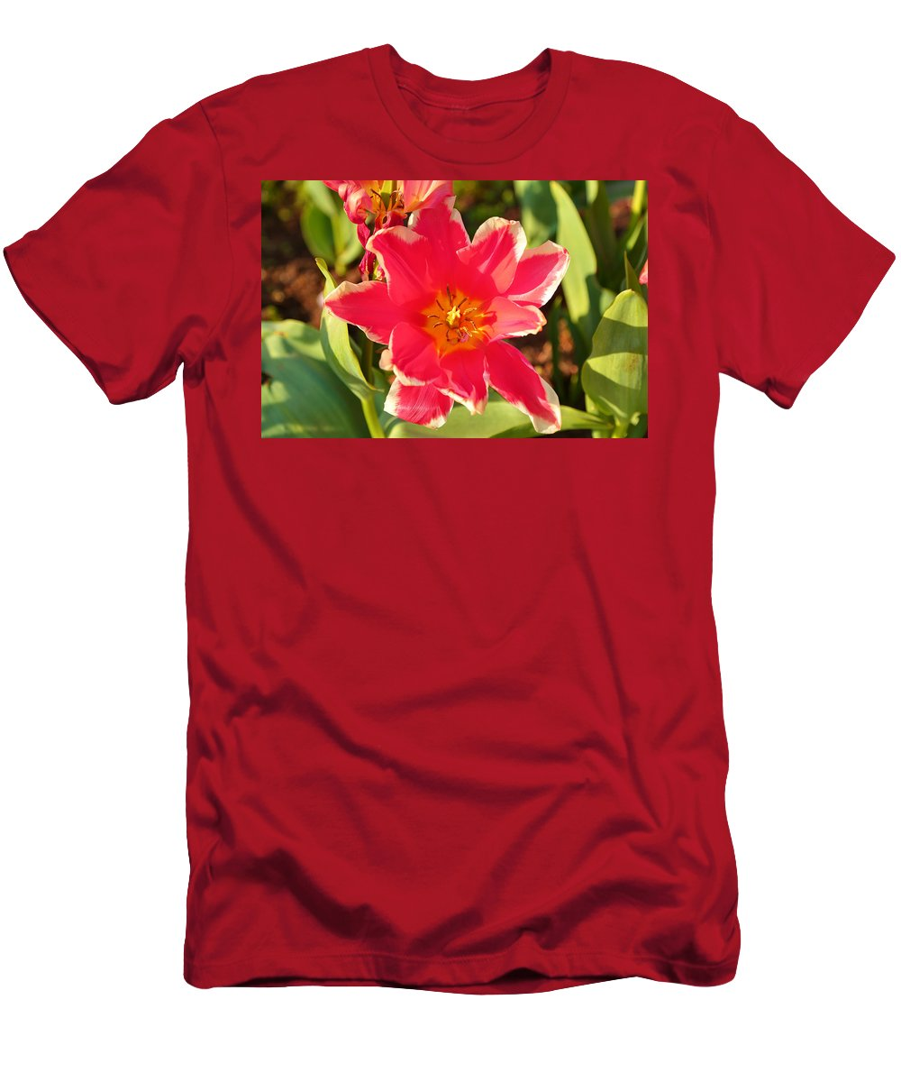 Architectural Men's T-Shirt (Athletic Fit) featuring the photograph Cherry Blossoms 2013 - 093 by Metro DC Photography