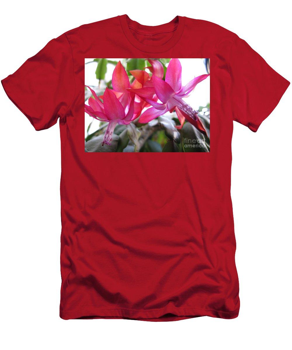 Celebration Men's T-Shirt (Athletic Fit) featuring the photograph Christmas Cactus Schlumbergera by Ausra Huntington nee Paulauskaite