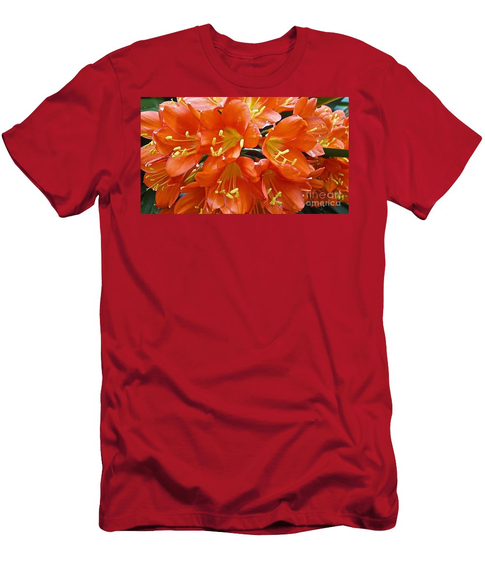 Flowers Men's T-Shirt (Athletic Fit) featuring the photograph Music Please Clivia by Cheryl Cutler