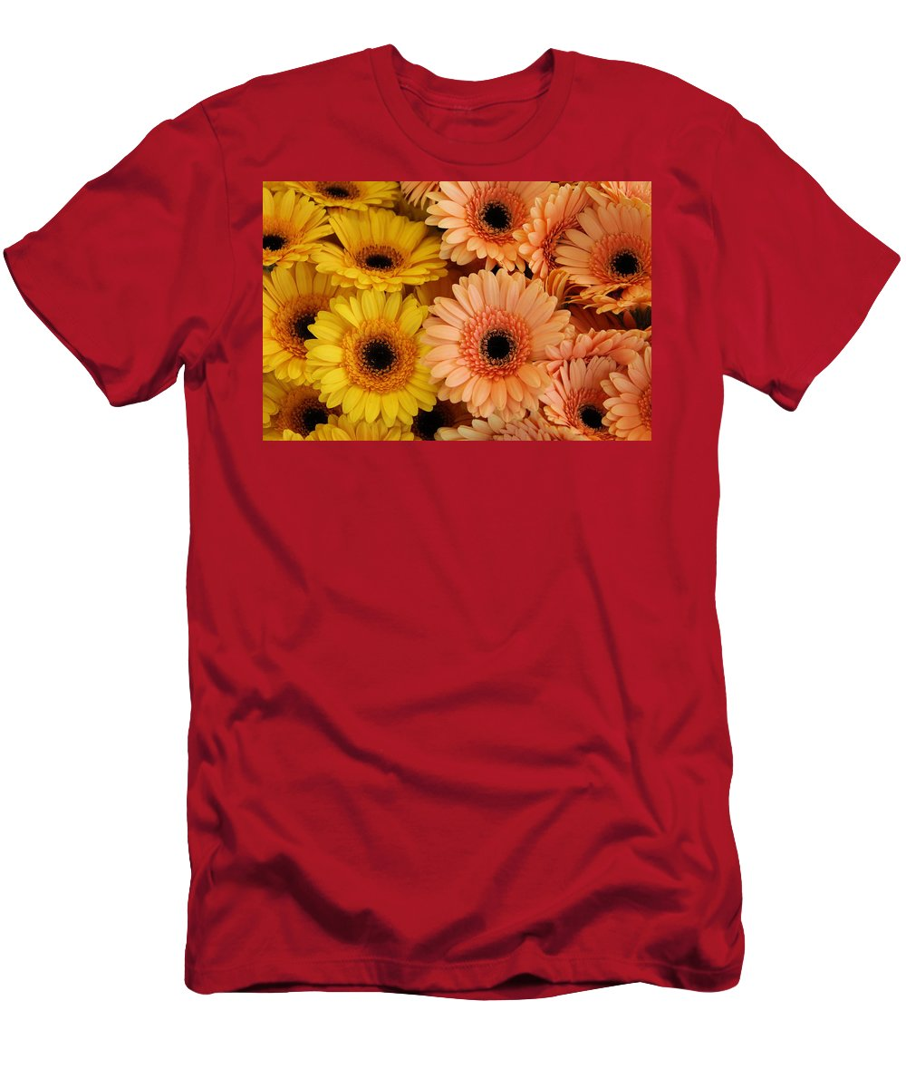 Daisy Daisies Marguerite Yellow Orange Flower Flowers Color Colorful Photograph Men's T-Shirt (Athletic Fit) featuring the photograph Daisies by Steve K