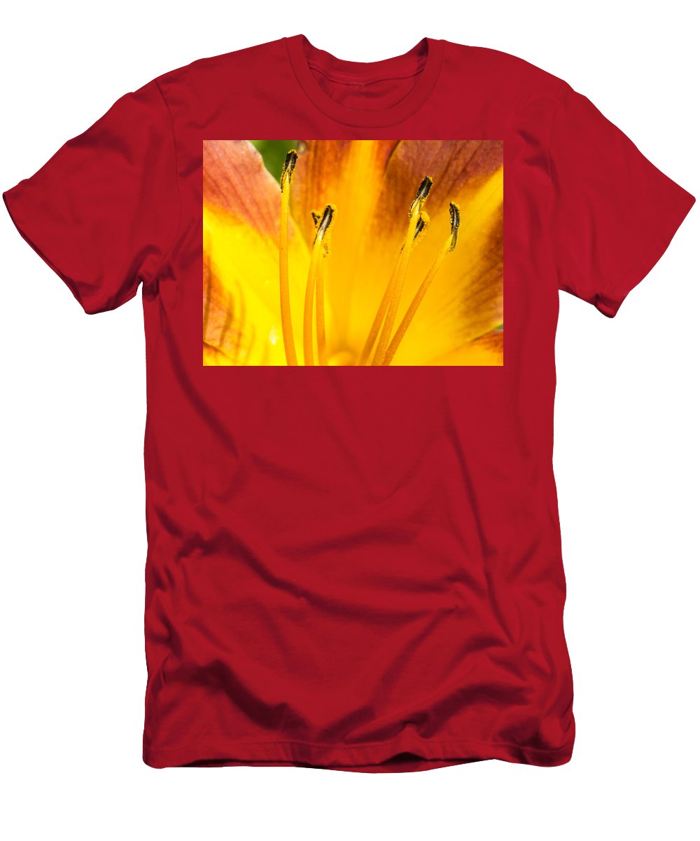 Flower Men's T-Shirt (Athletic Fit) featuring the photograph Daylily by Steven Ralser