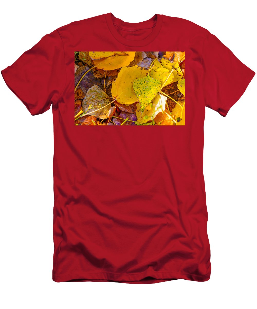 Autumn Men's T-Shirt (Athletic Fit) featuring the photograph Dead Poplar Leaves by Alain De Maximy