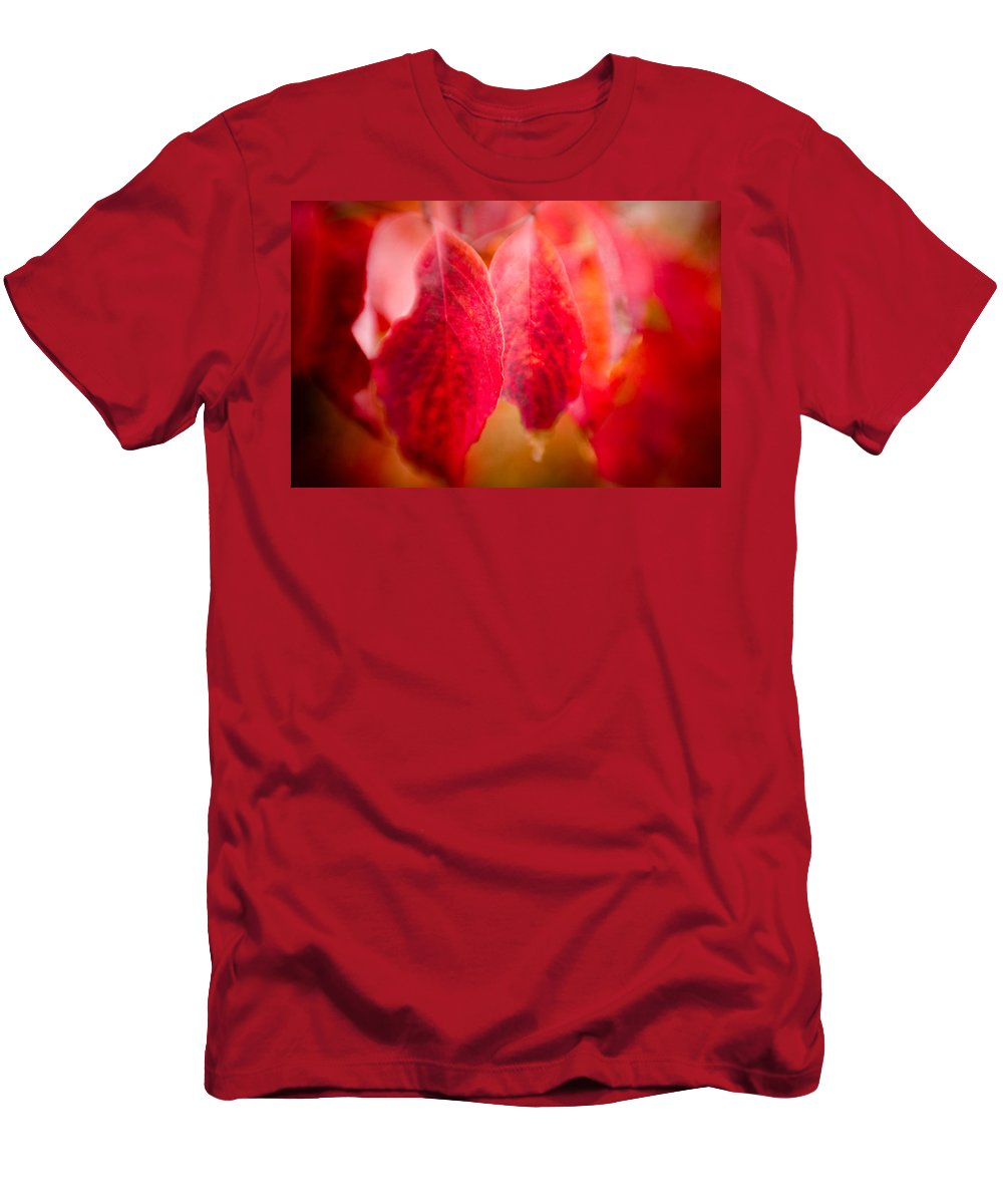 Color Men's T-Shirt (Athletic Fit) featuring the photograph Fall Colors 0666 by Timothy Bischoff