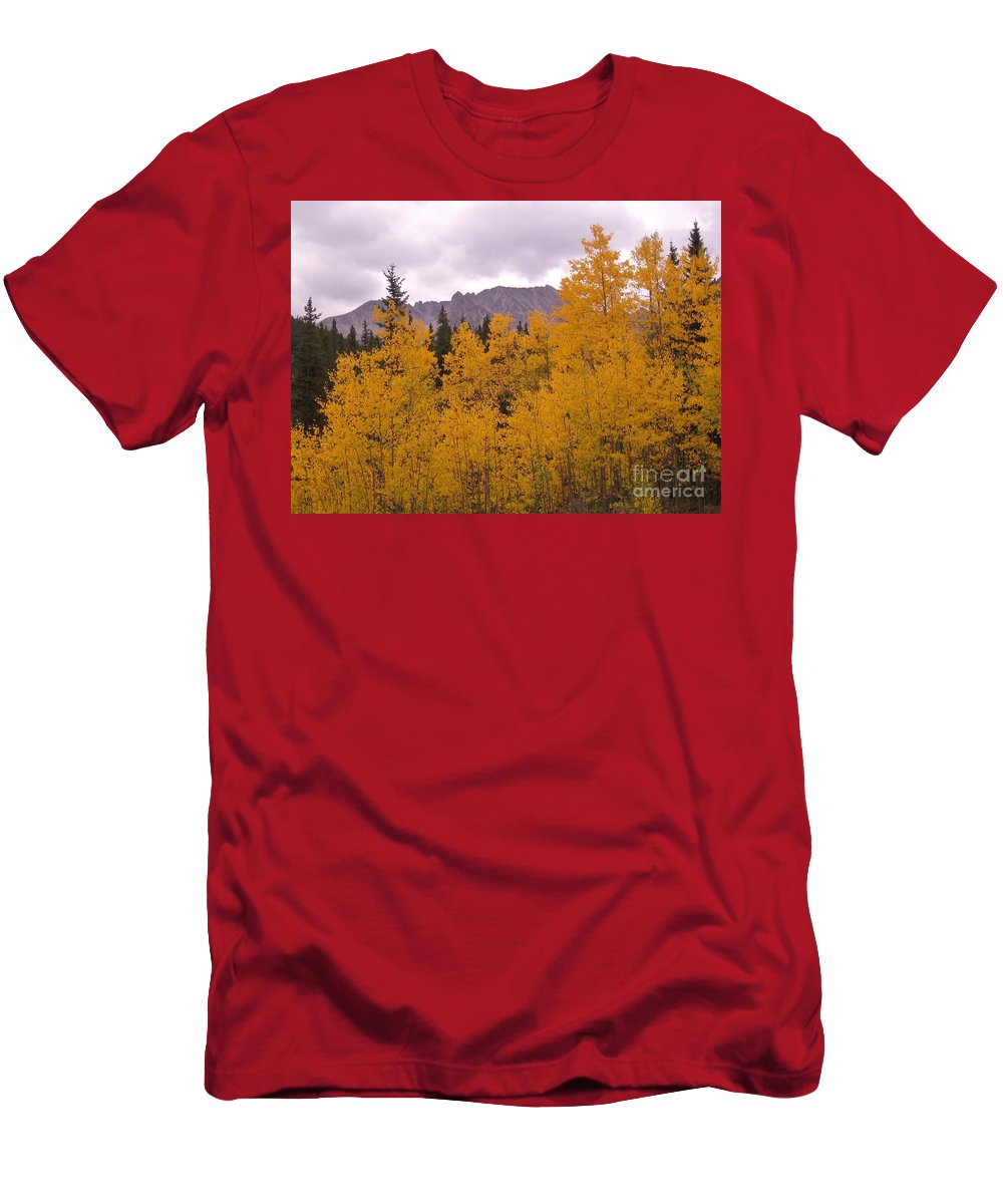 Maroon Bells Men's T-Shirt (Athletic Fit) featuring the photograph Fall In Maroon Bells by Tonya Hance