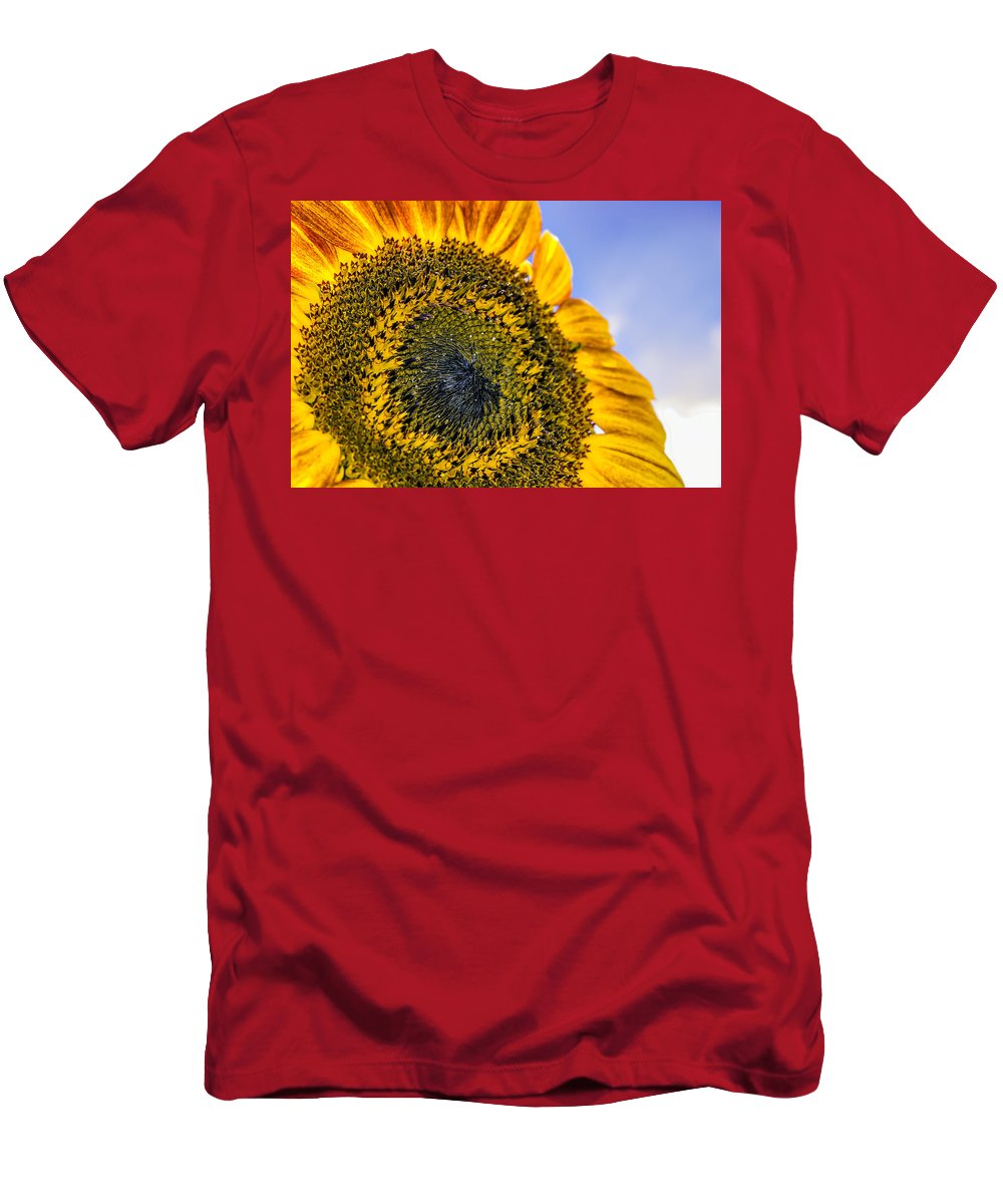 Agriculture Men's T-Shirt (Athletic Fit) featuring the photograph Helianthus by Rob Sellers