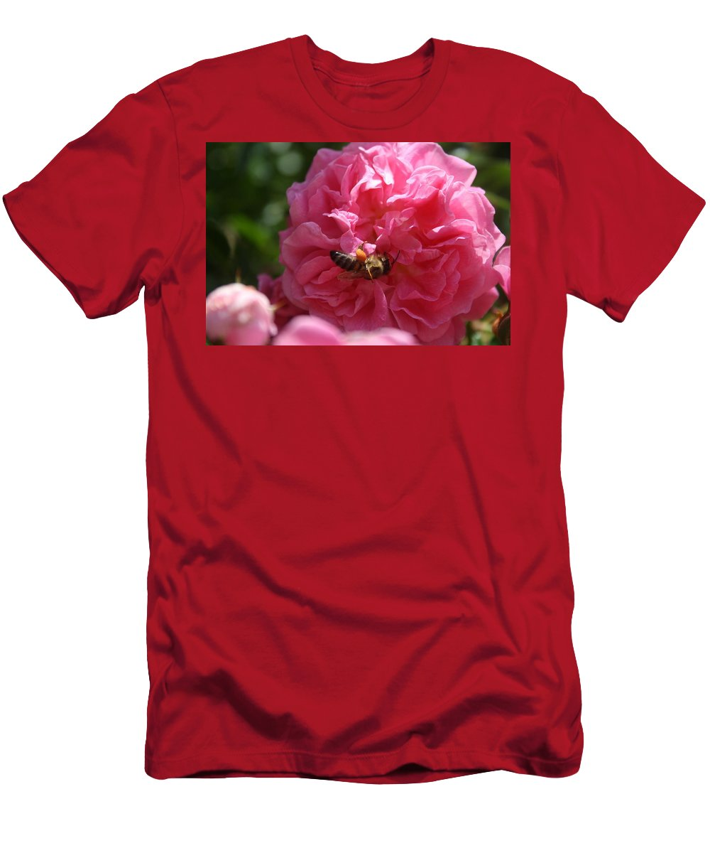Rose Men's T-Shirt (Athletic Fit) featuring the photograph Honey Bee Collecting Pollen On A Pink Rose by Taiche Acrylic Art
