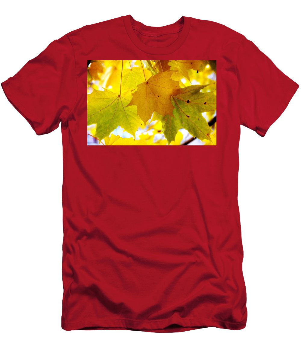 Autumn Men's T-Shirt (Athletic Fit) featuring the photograph Maple Leaves In Autumn Glory by Jenny Rainbow
