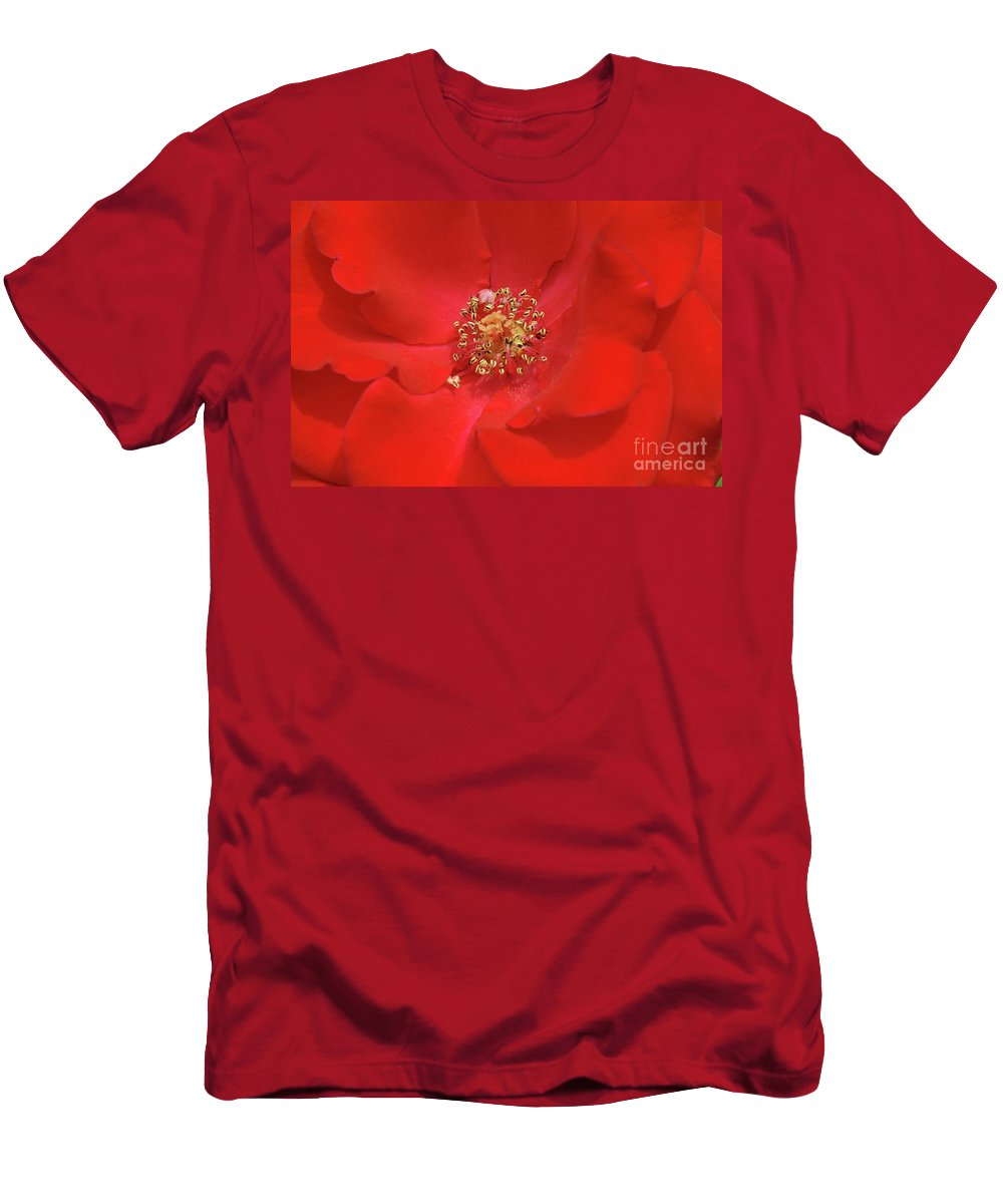 Olympiad Hybrid Men's T-Shirt (Athletic Fit) featuring the photograph Olympiad Hybrid by Allen Beatty