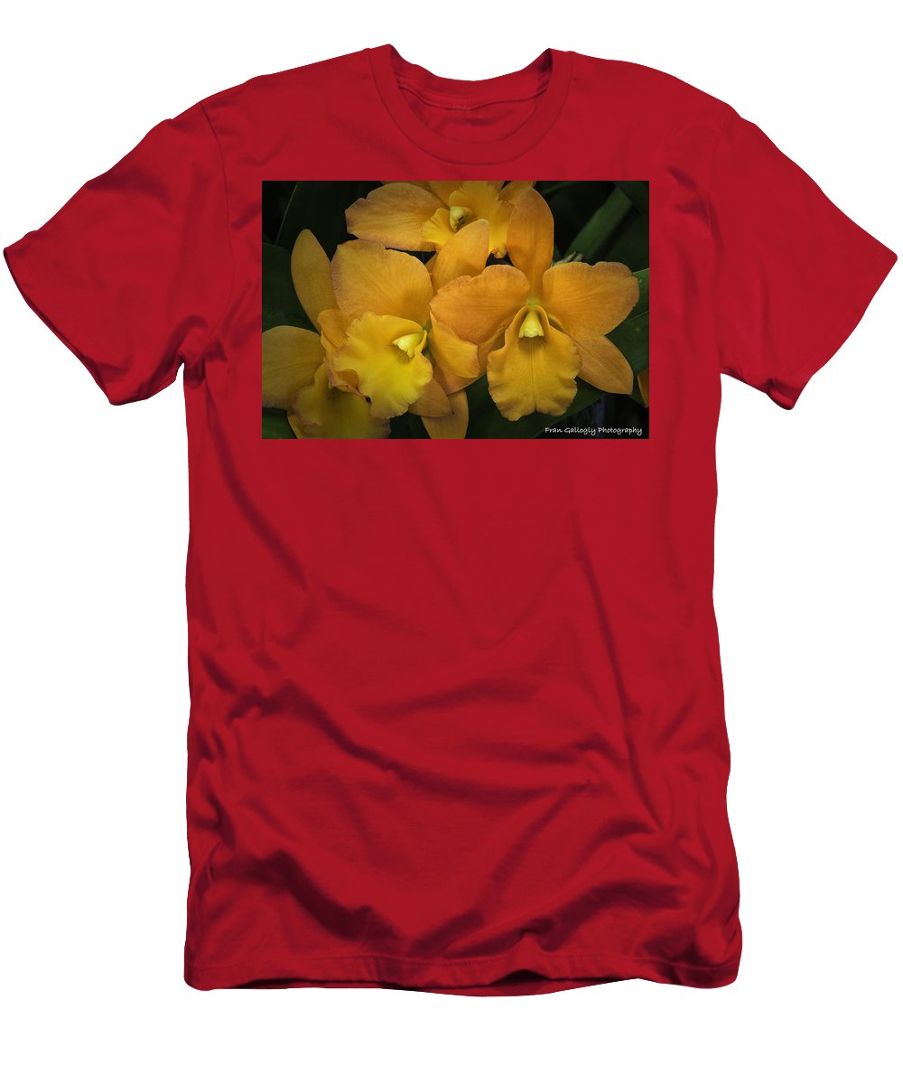 Orchid Men's T-Shirt (Athletic Fit) featuring the photograph Orange Orchid Group by Fran Gallogly