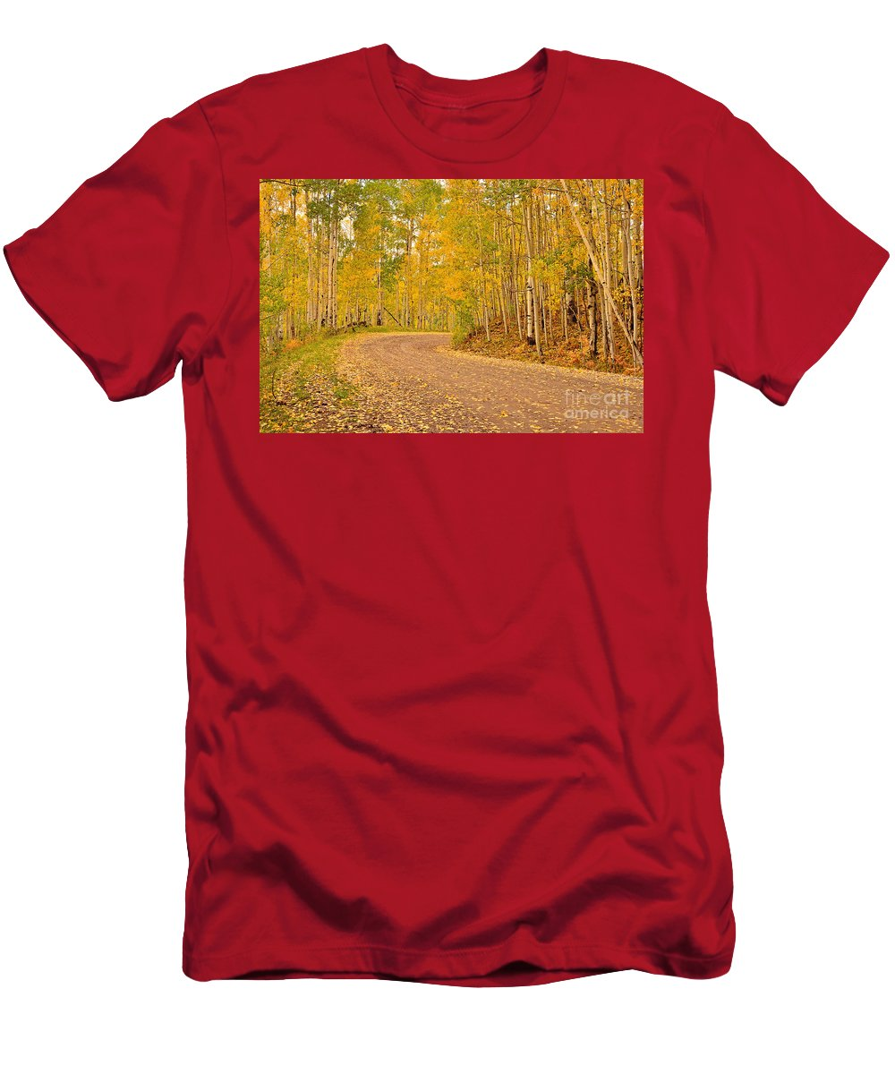 Autumn Men's T-Shirt (Athletic Fit) featuring the photograph Peaceful Drive by Kelly Black