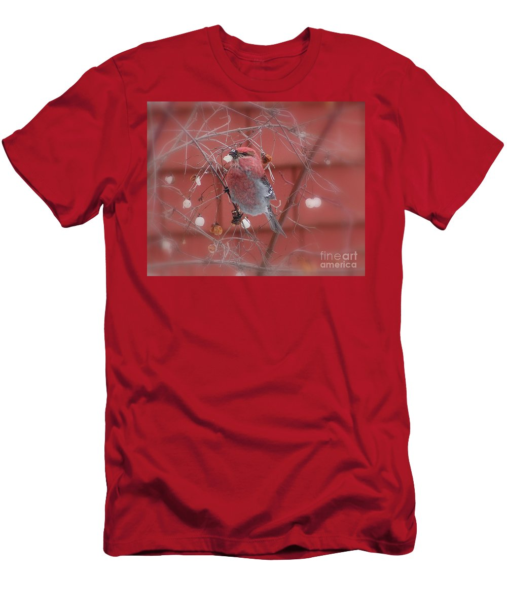 Pine Men's T-Shirt (Athletic Fit) featuring the photograph Pine Grosbeak by Leone Lund