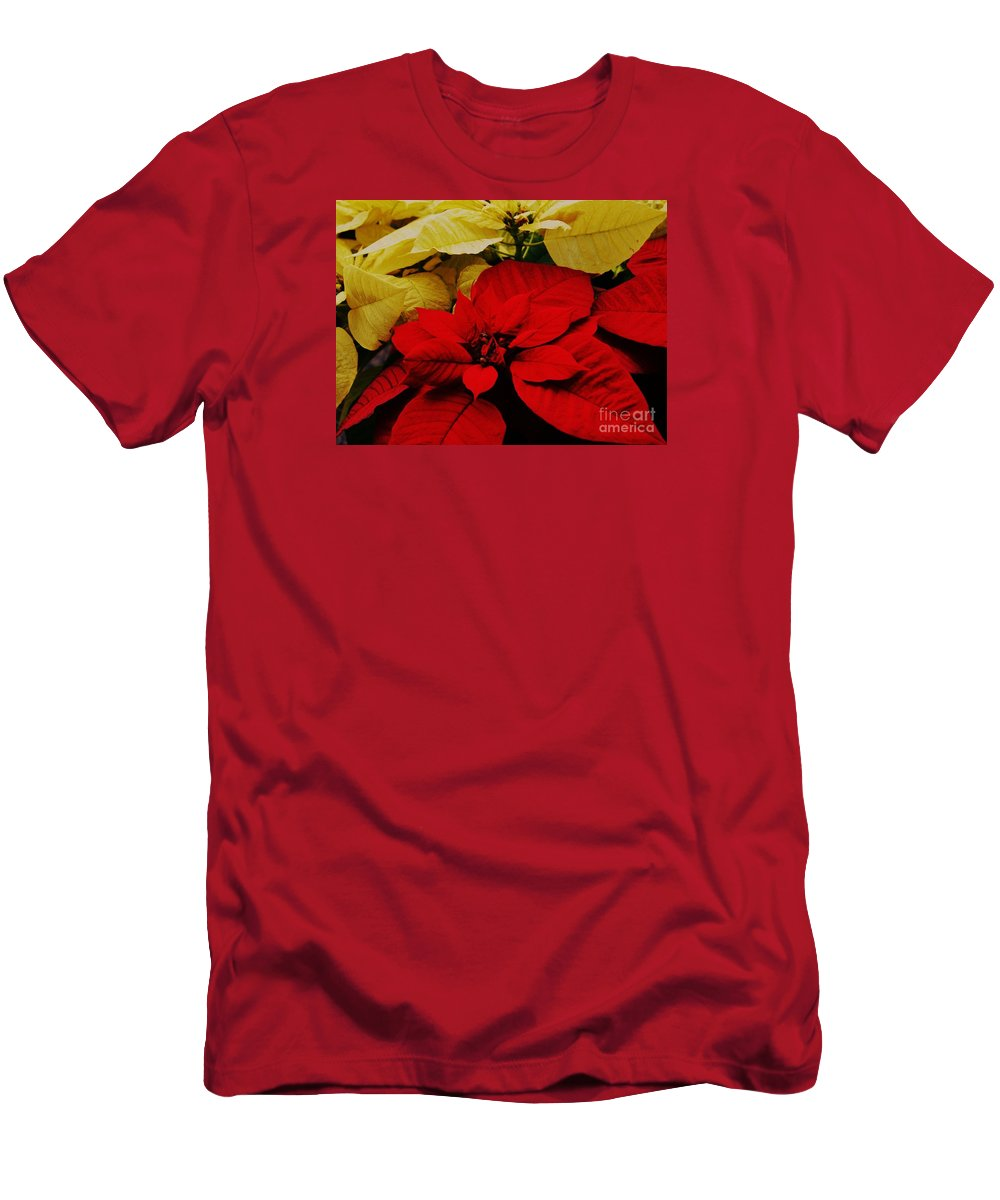 Poinsettias Seasonal Image Nature Art Christmas Cards Christmas Decoration Holiday Plant Floral Perennial Artwork For The Holidays Vibrant Red Leaves Soft White Leaves Canvas Print Metal Frame Wood Print Metal Frame Available On Greeting Cards Spiral Note Books Mugs Shower Curtains Duvet Covers New Fleece Blankets Pouches Weekender Tote Bags And Phone Cases Men's T-Shirt (Athletic Fit) featuring the photograph Red And White Poinsettias by Marcus Dagan