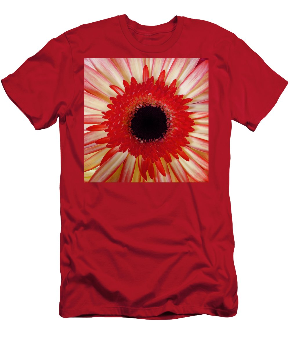 Flower Men's T-Shirt (Athletic Fit) featuring the photograph Red Macro Daisy by Joseph Hedaya