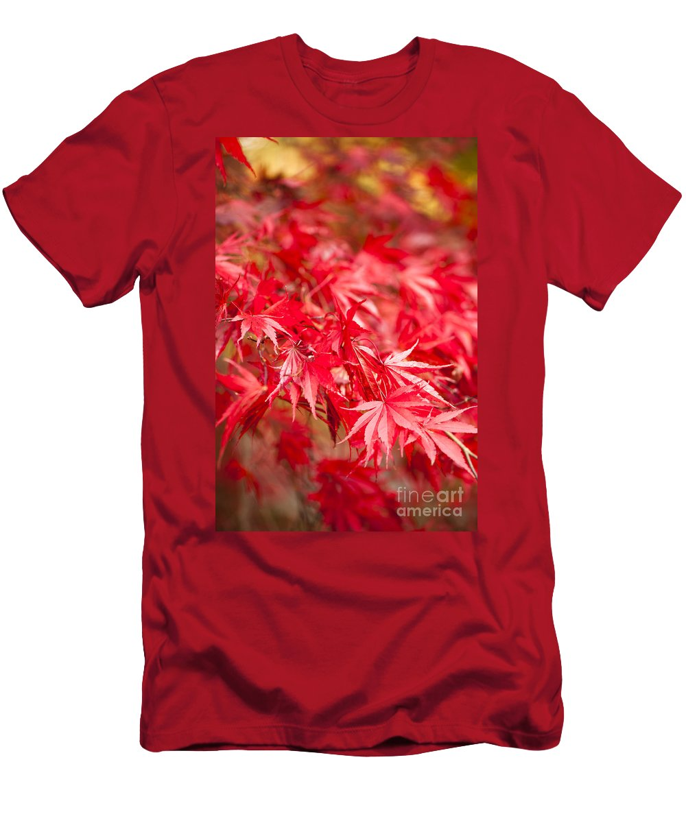 Acer Men's T-Shirt (Athletic Fit) featuring the photograph Red Red Red by Anne Gilbert