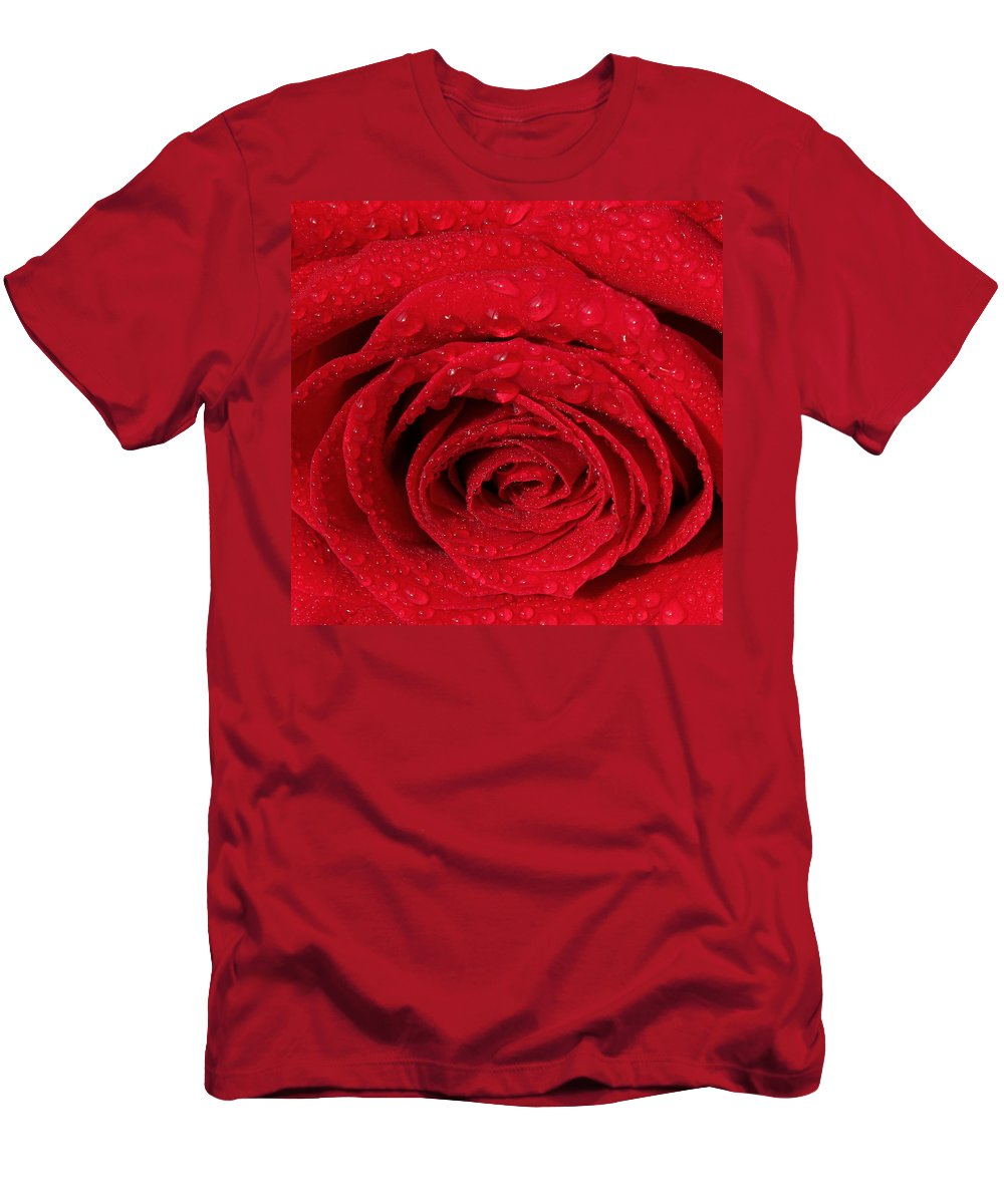 Rose Men's T-Shirt (Athletic Fit) featuring the painting Red Rose And Water Drops by Georgeta Blanaru