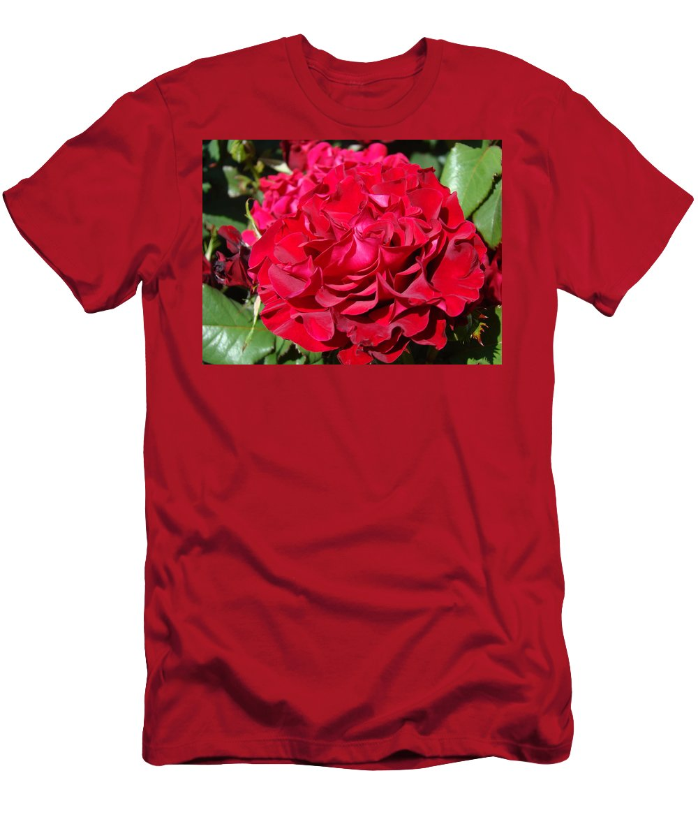 Rose T-Shirt featuring the photograph RED Rose Art Prints Big Roses Floral by Patti Baslee