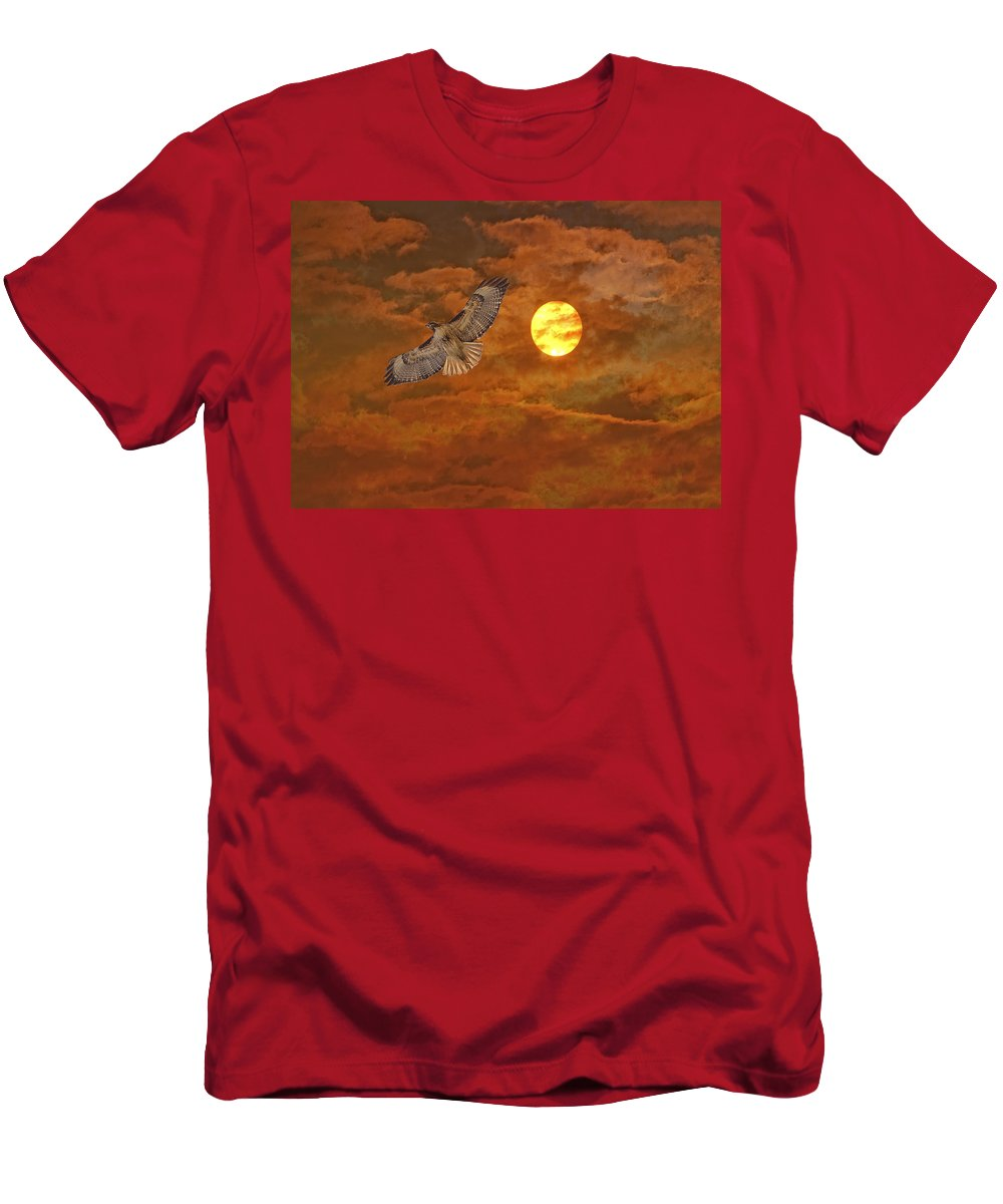 Birds Men's T-Shirt (Athletic Fit) featuring the photograph Red Tailed Hawk by Angela Stanton