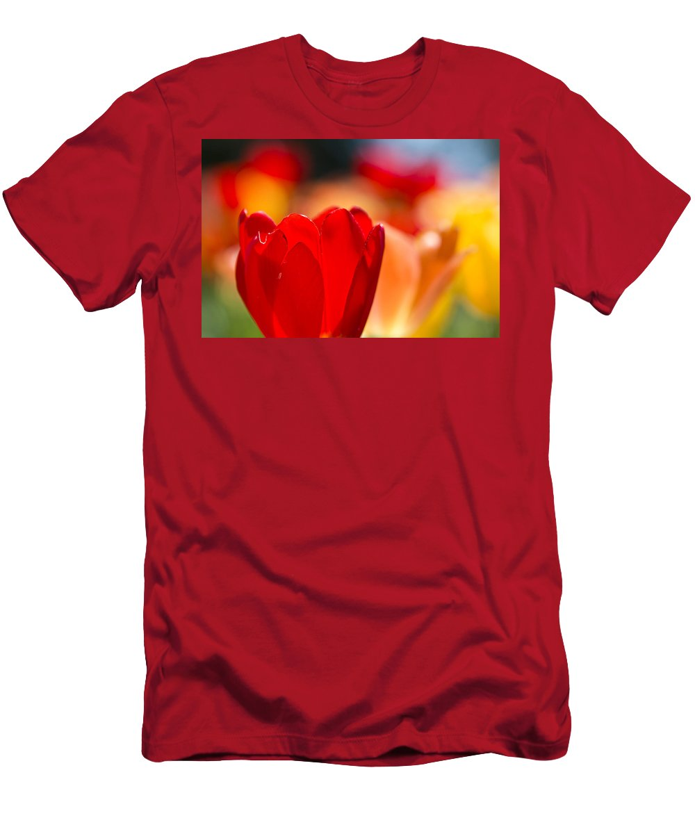 Rose Photographs Men's T-Shirt (Athletic Fit) featuring the photograph Red Tulip by Vernis Maxwell