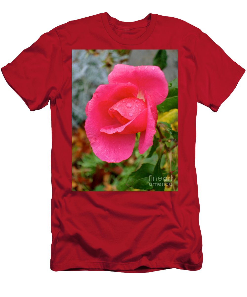 Horticultural Demonstration Gardens Men's T-Shirt (Athletic Fit) featuring the photograph Rose by Joseph Yarbrough
