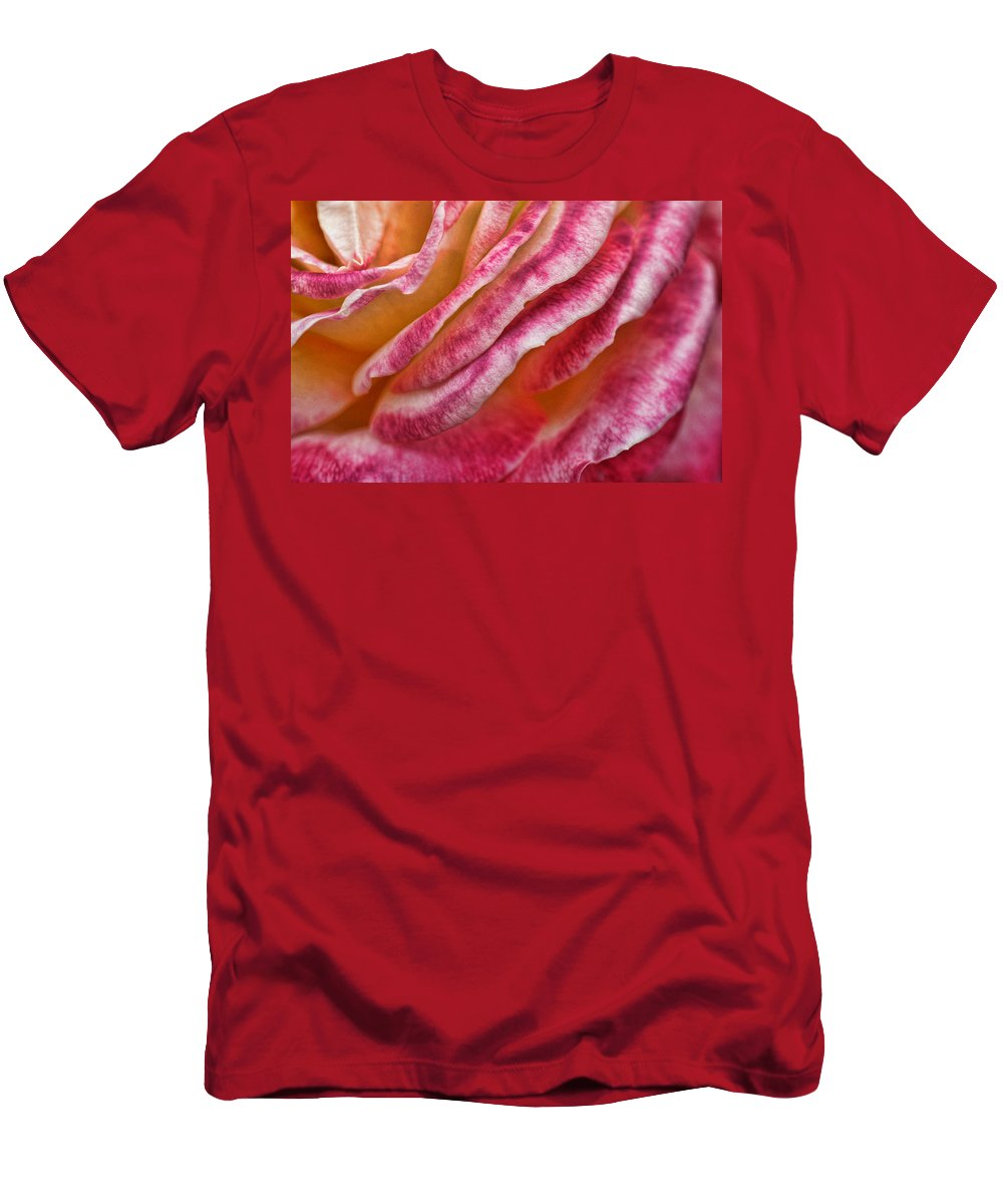 Rose Men's T-Shirt (Athletic Fit) featuring the photograph Rose Petals by Michael McGowan