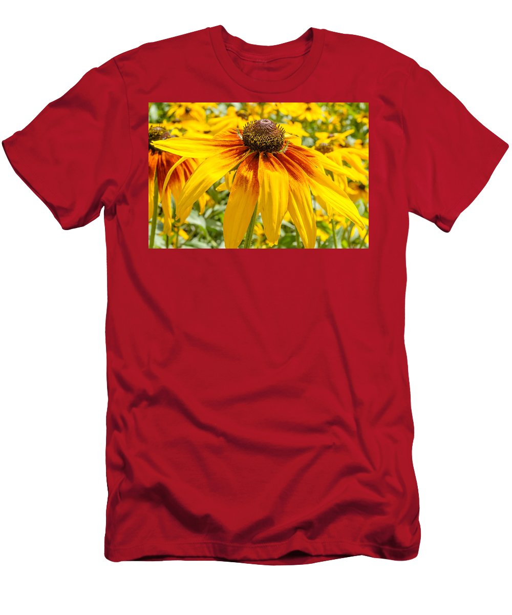 Background Men's T-Shirt (Athletic Fit) featuring the photograph Rudbeckia by Alain De Maximy