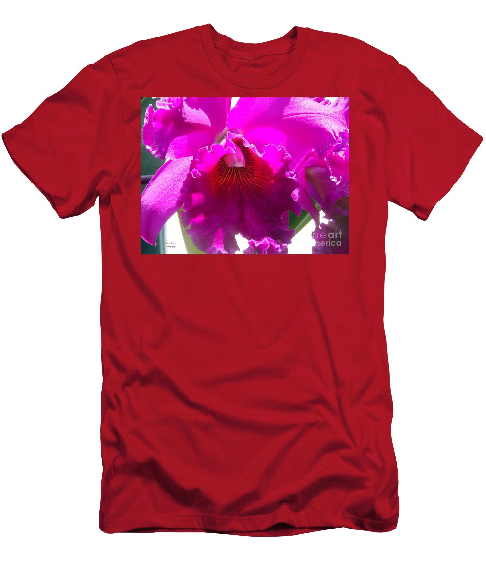Stunning Men's T-Shirt (Athletic Fit) featuring the photograph Stunning by Jennifer Lavigne