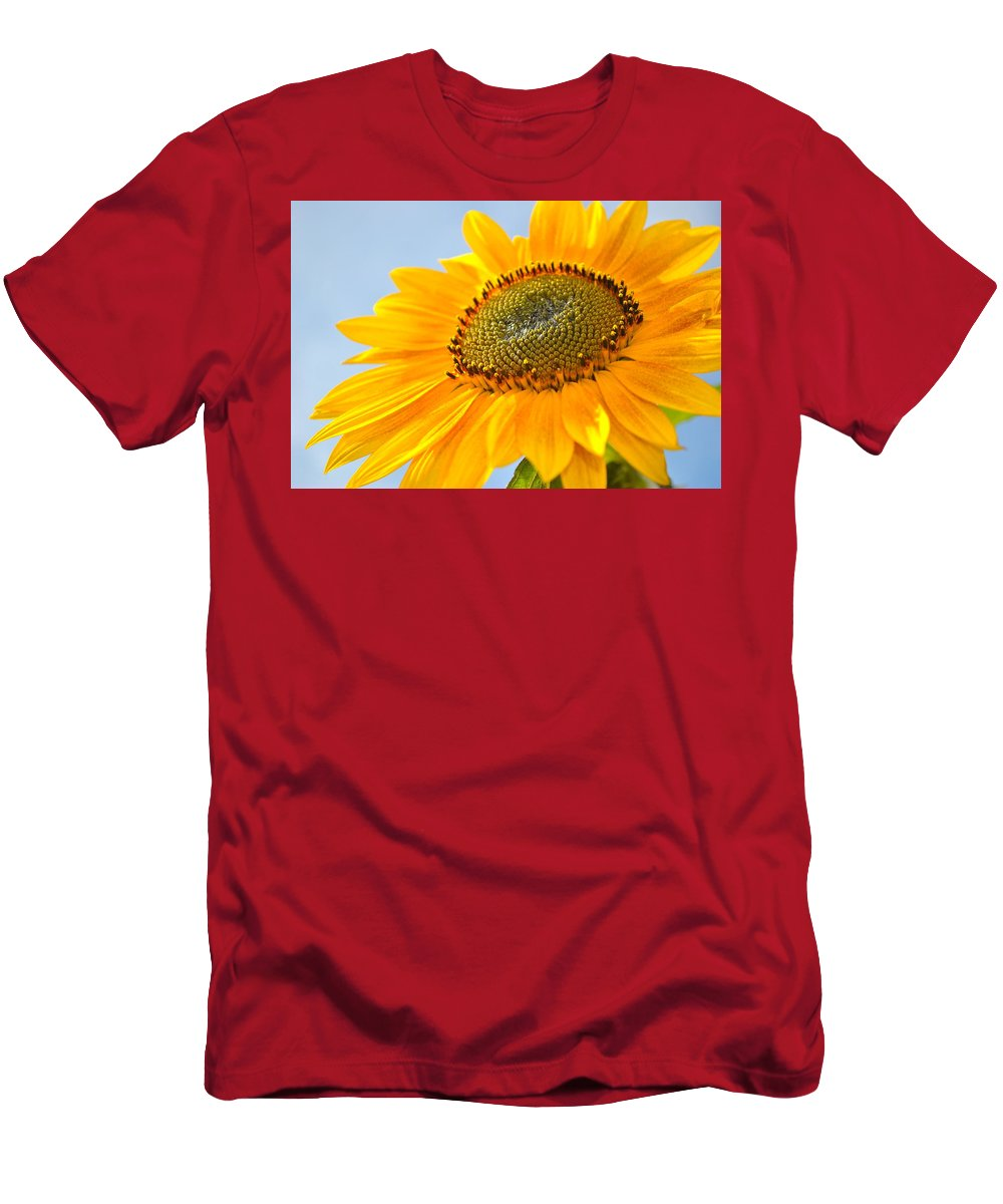 Sunflower Men's T-Shirt (Athletic Fit) featuring the photograph Sunflower by Cathy Mahnke