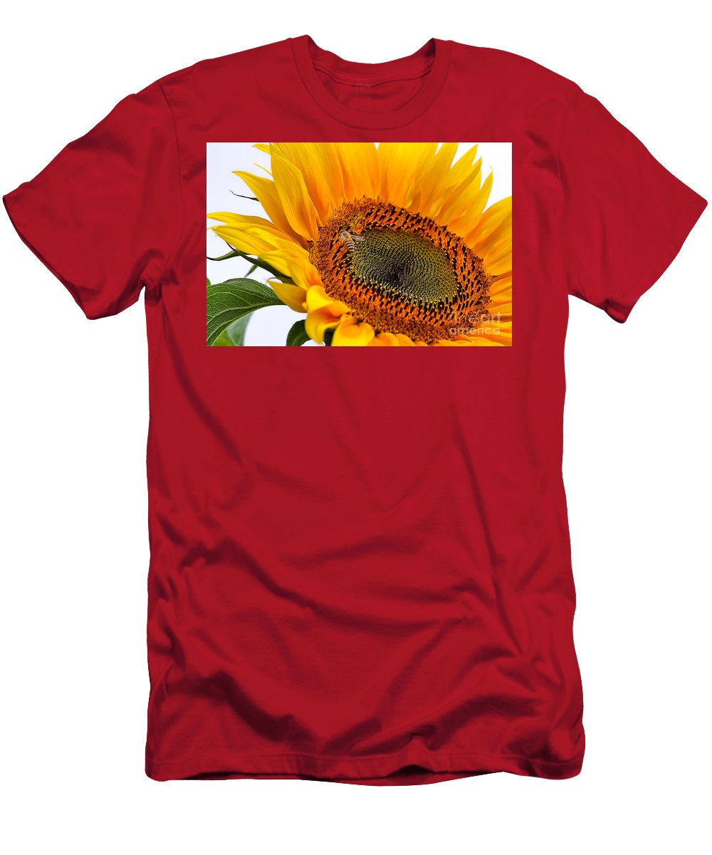 Nature Men's T-Shirt (Athletic Fit) featuring the photograph Sunflower by Louise Heusinkveld