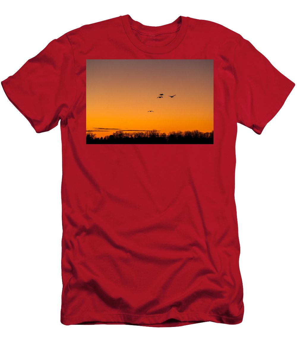 Goose Men's T-Shirt (Athletic Fit) featuring the photograph The Flock Grows by Thomas Sellberg