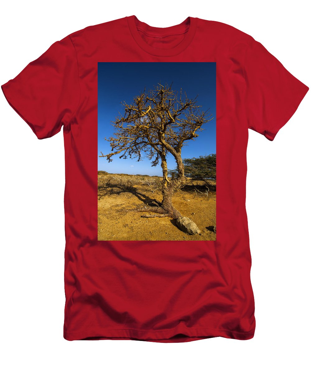 Nature Men's T-Shirt (Athletic Fit) featuring the photograph Twisted Tree by Jess Kraft