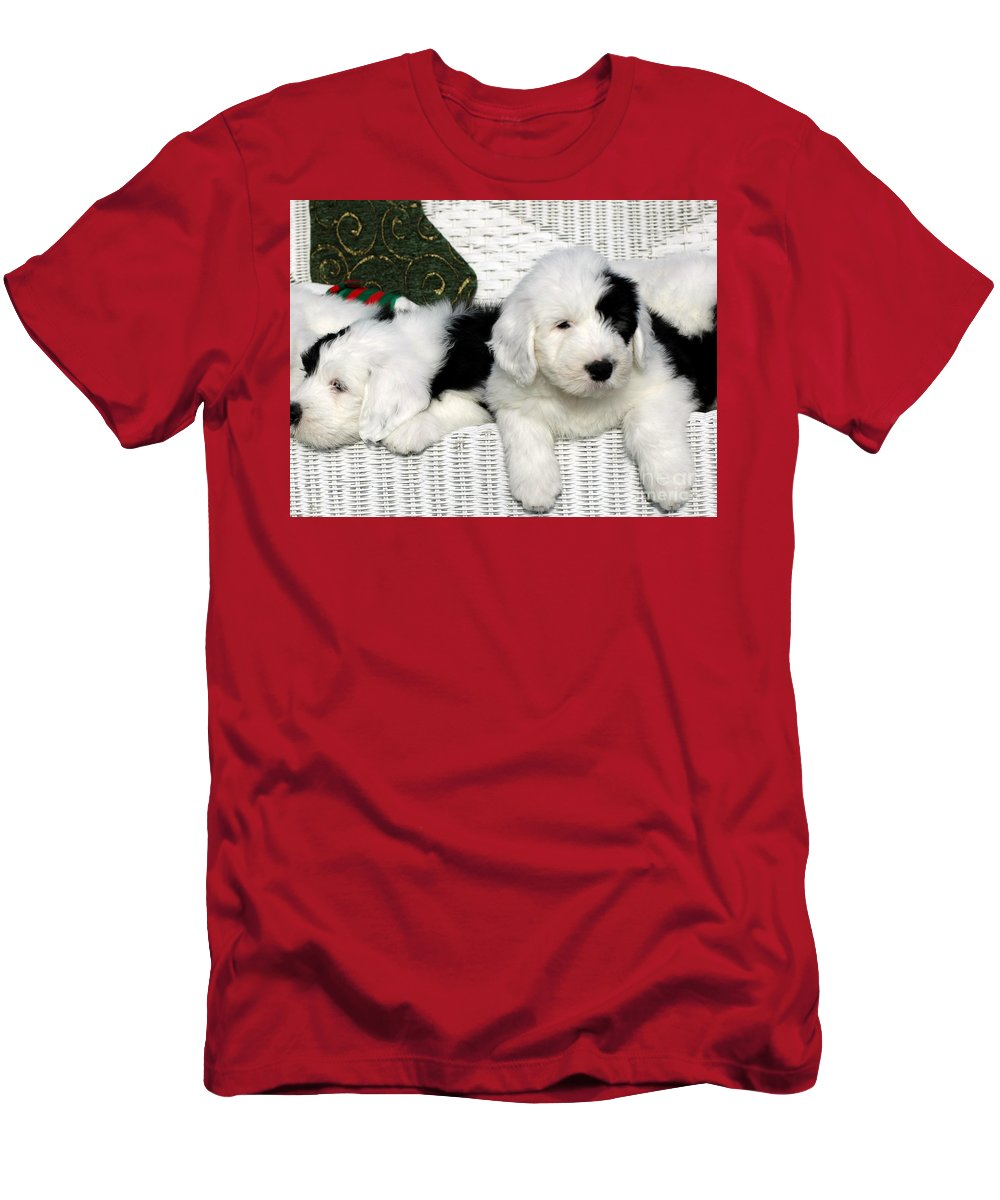 Old Men's T-Shirt (Athletic Fit) featuring the photograph Waiting For Santa by Kathleen Struckle
