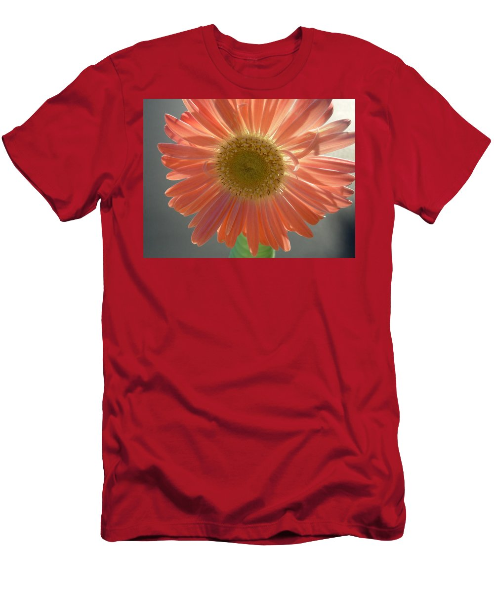 Gerbera Photographs Men's T-Shirt (Athletic Fit) featuring the photograph 0803 by Kimberlie Gerner