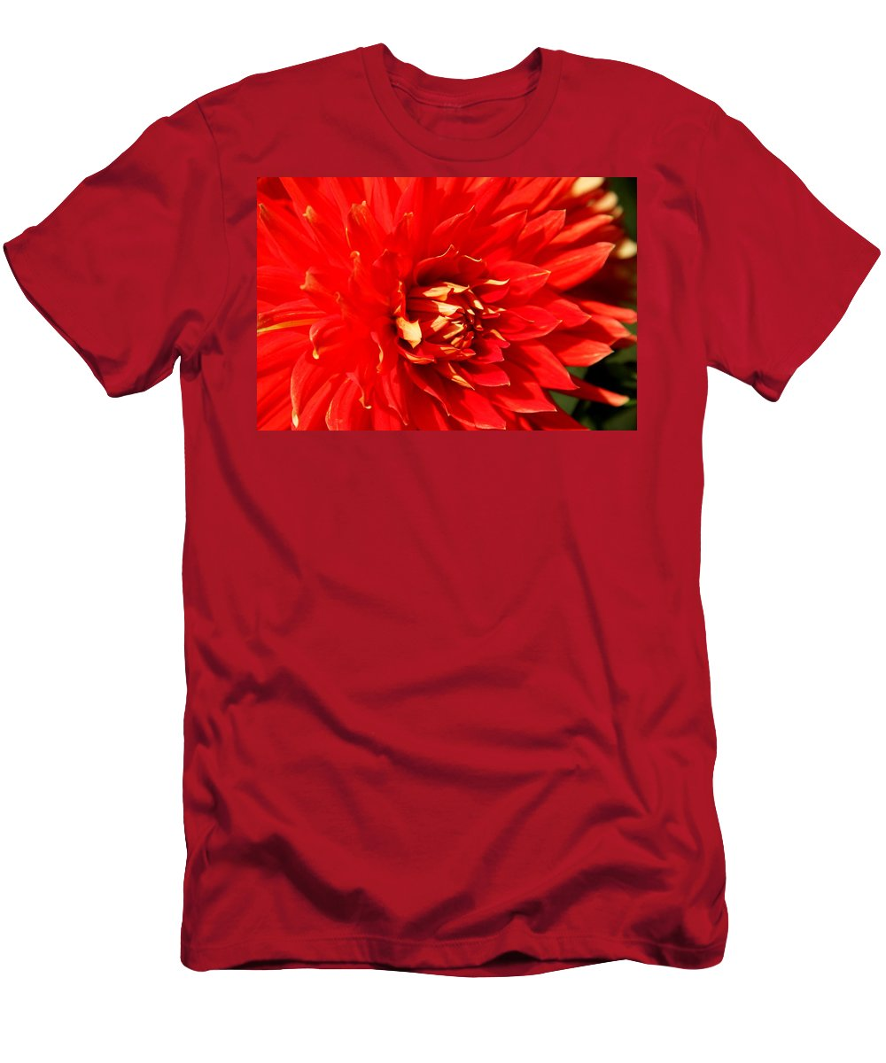Red Dahlia Men's T-Shirt (Athletic Fit) featuring the photograph Blazing Red by Christiane Schulze Art And Photography